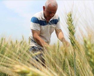Bakan Pakdemirli duyurdu: Çiftçilere 374 milyon lira destek ödemesi yapıldı