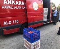 CHP'li ABB'de skandal olay! İtfaiye aracıyla domates taşıdılar