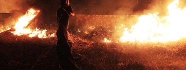 Bodrum'da yangın paniği
