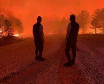 Denizli Çardak'ta orman yangını!