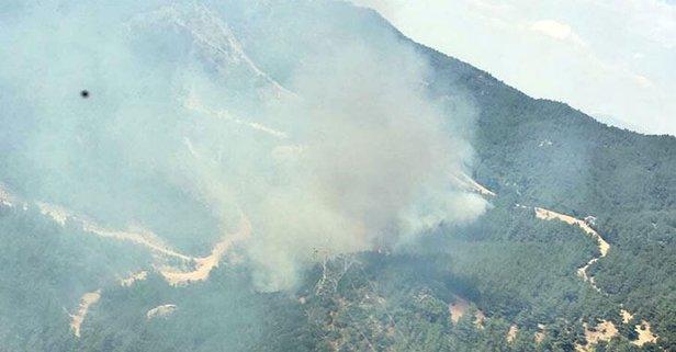 Menderes'te ağaçlandırma sahasında yangın!