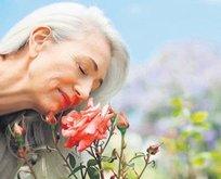 Alzheimer'ın kokusu çıktı