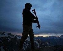 PKK'da çözülme sürüyor! Teslim oldu...