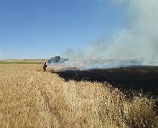 Uşak'taki yangında 40 dönüm ekili alan, 5 dönüm ormanlık alan zarar gördü