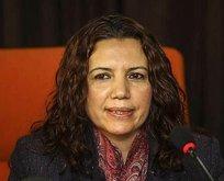 HDP'li Irmak'a dava açıldı