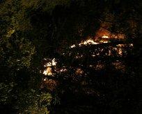 Emirgan Korusu'ndaki yangının sırrı çözüldü