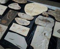Adnan Oktar suç örgütüne 'kaçak fosil' operasyonu