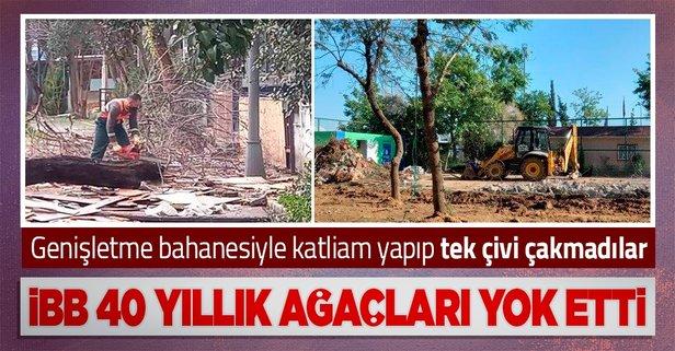 İBB ağaçları kesip iki aydır tek çivi çakmadı!