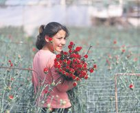 Çiçek gibi kazanç