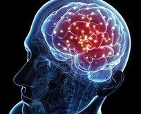 Hem hafızayı güçlendiriyor hem de beyni geliştiriyor!