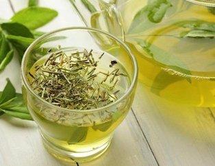 Yeşil çayın faydaları nelerdir? Yeşil çayın yan etkileri var mı?