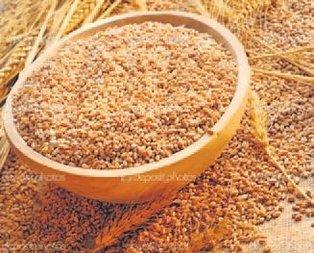 Buğday fiyatı 1.100 lira oldu