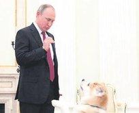 Putin köpeği reddetti