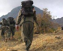 PKK'ya koronavirüs darbesi!