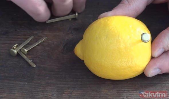 Rus mühendis limon ile inanılmazı başardı