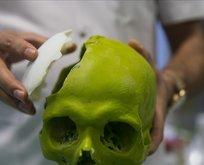 Kafatasında yeni bir organ bulundu
