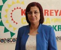 2 HDP'li tutuklandı
