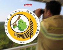 OGM 2.083 personel alımı başvuru şartları neler?