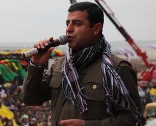 Demirtaş'tan pişkin Öcalan savunması