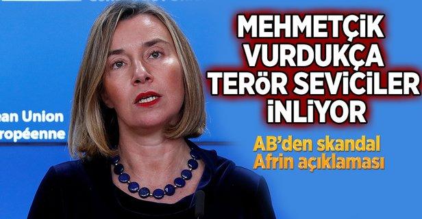 AB'den Afrin açıklaması