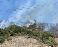 Zonguldak'ta 2 dönüm ormanlık alan yandı!