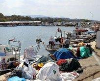 Marmara'da o balıklar için dökme avcılık yasaklandı