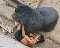 Kafese girdi ayıya yem oldu... Kan donduran görüntü!