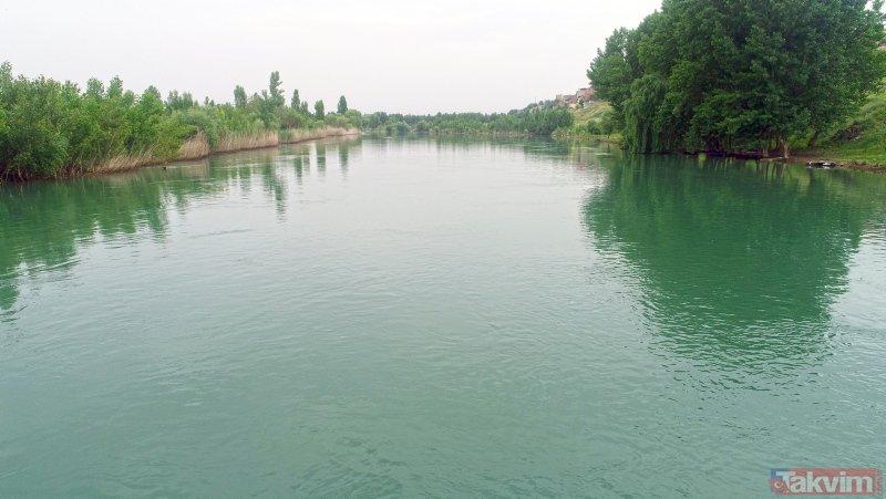 Dicle Nehri 30 yıl sonra ilk kez böyle görüntülendi