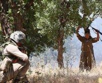 PKK'da çözülme sürüyor!