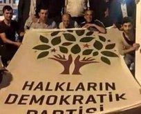 İşte HDPnin seçim sonrası Öcalan planı