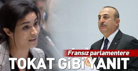 Dışişleri Bakanı Mevlüt Çavuşoğlu'ndan Fransız parlamentere tokat gibi yanıt