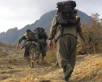 5 PKK'lı terörist teslim oldu!