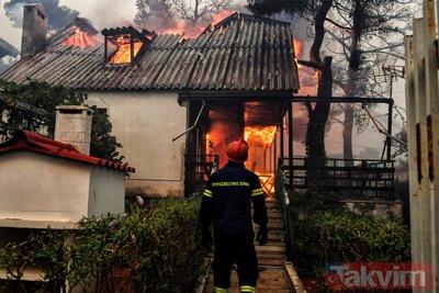 Yunanistan'daki yangın felaketinde dehşete düşüren kareler