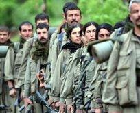 PKK'lılar Ermenistan'ın ilk savunma hattında
