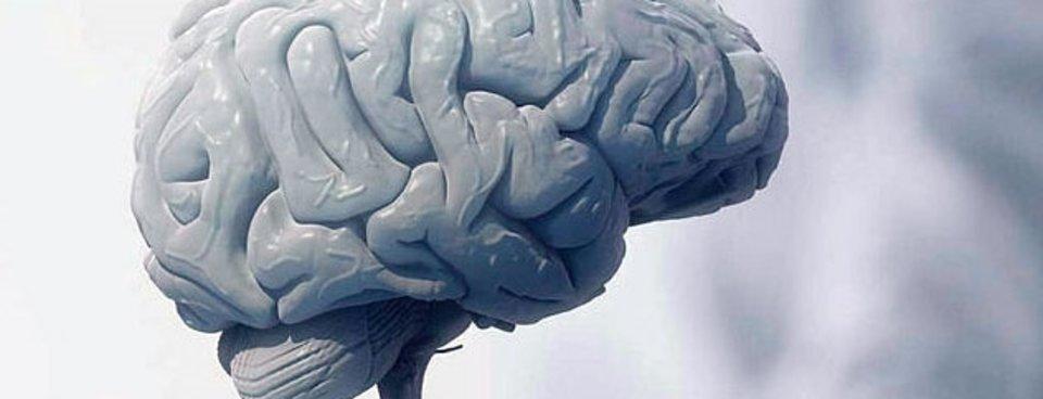 Beyne Zarar Veren Yiyecekler Nelerdir Işte Beyni Tüketen Besinler