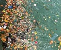Tatil cennetinde deniz çöplüğe döndü! CHP'li belediye seyretti