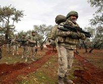 Cerablus'tan Bahar Kalkanı Harekatı'na destek