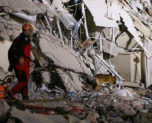 SON DAKİKA: İzmir'de deprem felaketi! İşte deprem bölgesinden son dakika haberleri...