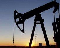 Petrol devlerinden 20 milyar $ zarar