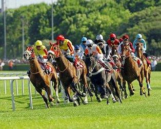 At yarışçılığı