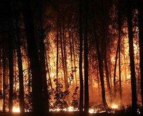 6 orman yangını kontrol altına alındı!