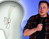 Elon Musk'dan Google'ın projesi hakkında çarpıcı açıklamalar!