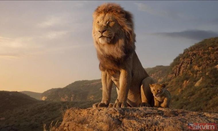 Vahşi doğada nefes kesen karşılaşma! Ormanlar kralı aslan hayatının şokunu yaşadı