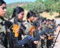 PKK'nın kirli oyunu ellerinde patladı! Şehir yapılanması çökertildi