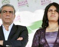 Terör destekçisi HDP'li vekile yakalama kararı