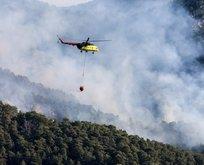 Antalya'da yine orman yangını