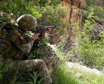 Hakkari'de PKK'ya ağır darbe!