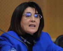 Kabul edildi! HDP'li Zana hakkında kritik karar