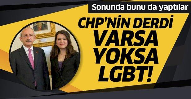 CHP'nin derdi varsa yoksa LGBT!