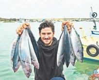 Bu yıl balık bol olacak